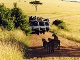 Masai-Mara National Reserve, 2002