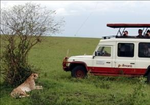 Masai-Mara National Reserve