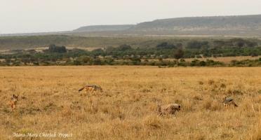 NASHIPAI – CHALLENGES OF MOTHERHOOD (Part II)