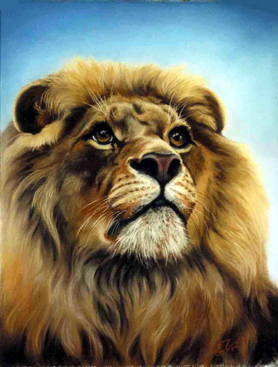 Lion Head Painting Ima...