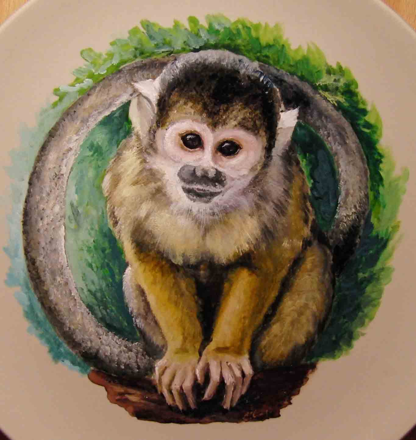Squirrel monkey on plate